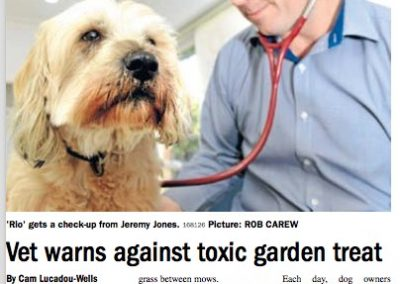 Vet warns against toxic garden treat